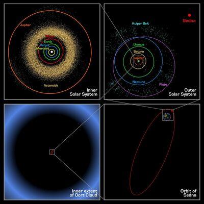 Oort cloud Sedna orbit
