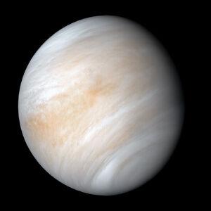 Venus (2)