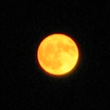 Moon-large,yellow