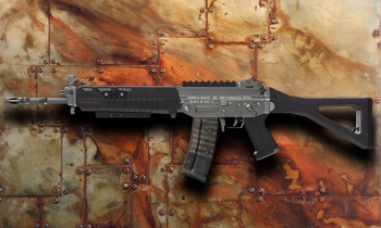 Primary sig551