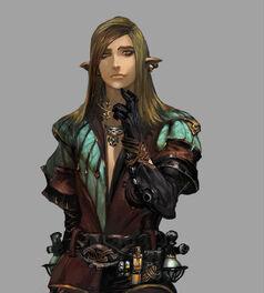 Strangerofswordcity character race elf