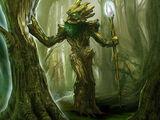 Mossbeard Patriarch