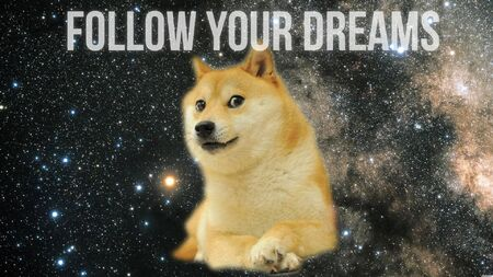 18361-doge-follow-your-dreams