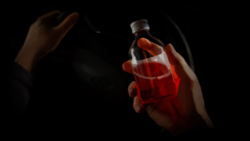 02 Bottle