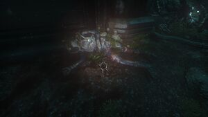 Jonsy Corpse