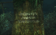Eternity Among The Stars