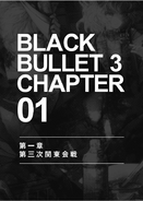Black Bullet v3 026
