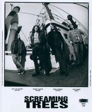 ScreamingTrees