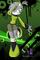 Nitro the Hedgecat