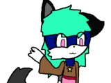 Aura Ori The Cat