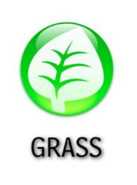 Grass Type Symbol by falke2009