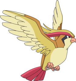Pidgeot AG anime