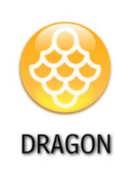 Dragon Type Symbol by falke2009