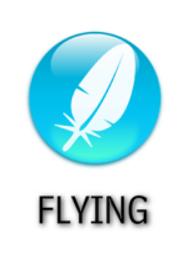 Flying Type Symbol by falke2009