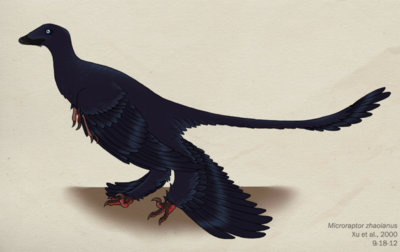 072 microraptor zhaoianus by green mamba-d5fajtu-1-