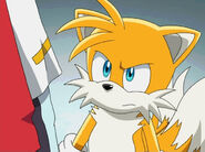 040tails