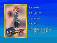 Sonic X karta 132