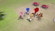 Team sonic runs