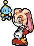 Sonic Advance 3 Cream