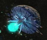 Space Colony ARK