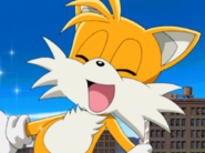 Tails Happy