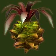 File:Dondora Fruit.png