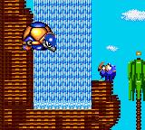 Sonic versus Turtle