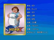 Sonic X karta 13