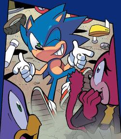 Sonic playfully boasting