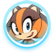 Sticks icon (Sonic Boom (Rise of Lyric))
