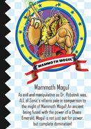 MammothMogulWhosWhoProfile