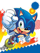 Sonic Super Digest Special Edition 9 cover (Raw)