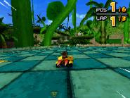 Treetops DS 07
