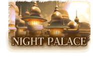 Night Palace icon