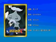 Sonic X karta 135