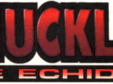 Knuckles the Echidna (comic series)