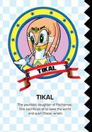 TikalProfile