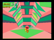 Chaotix special stage2