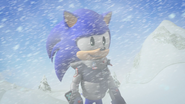 Sonic nervous smile in blizzard