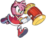 Amy Rose IDW