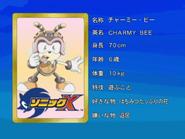 Sonic X karta 76