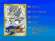 Sonic X karta 116