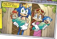 Hedgehog Family 30 years later