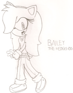 Bailey the Hedgehog