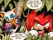 Knuckles and RougeArchise