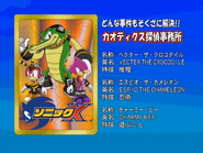 Sonic X karta 114