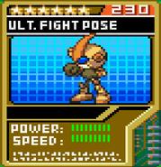 Fight Pose 2
