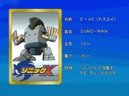 Sonic X karta 42