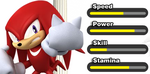 MS Stats Knuckles