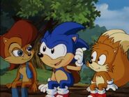 STH Sally Sonic and Tails